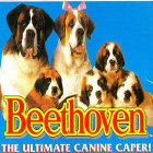 Beethoven s 2nd
